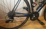 Canyon Endurace A.L 5.0, 3 Monate alt - Bild 0