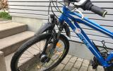 Blaues Lakes Mountainbike - Bild 1