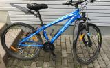 Blaues Lakes Mountainbike - Bild 3