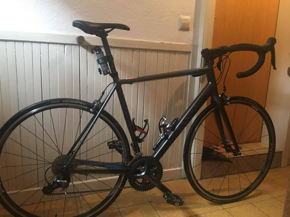 Canyon Endurace A.L 5.0, 3 Monate alt - Bild 1